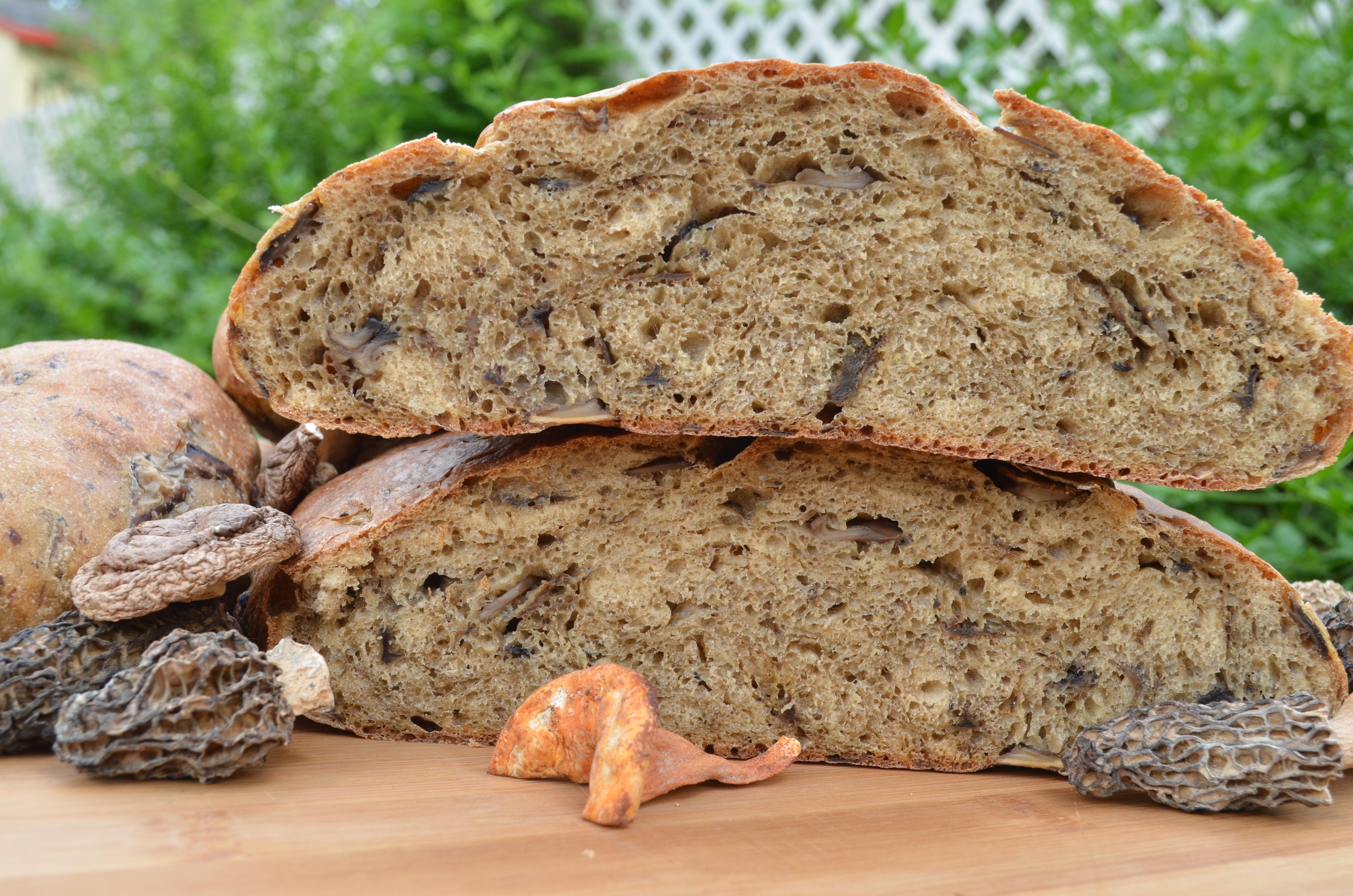 Pan de hongos silvestres (Wild mushroom bread)   Bread and Tortillas